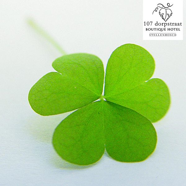 Wishing all of our followers a Happy St. Patrick's Day today! May the luck of the Irish be forever at your side.