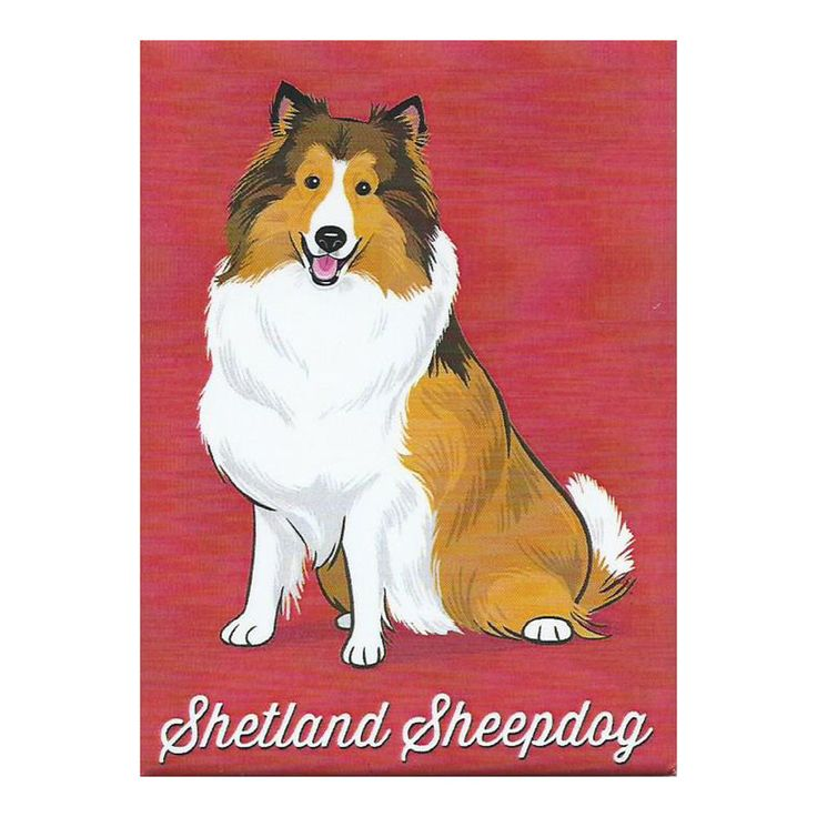 Sheltie Christmas Ornament