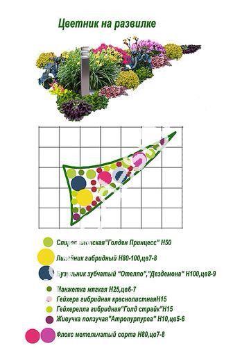 Схемы Цветники, Flowers