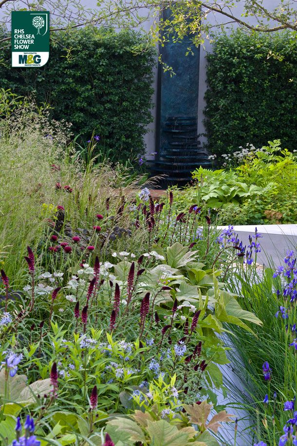 17 best images about chelsea flower show photos and plans for Waterscape garden designs