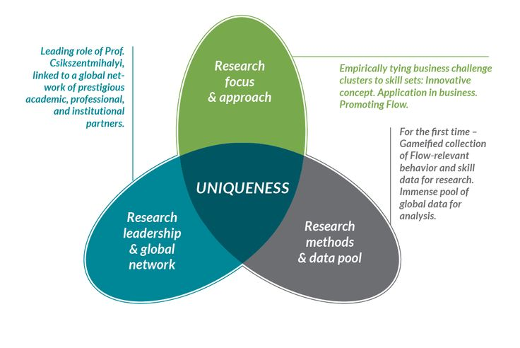 leadership_and_flow_research_uniqueness