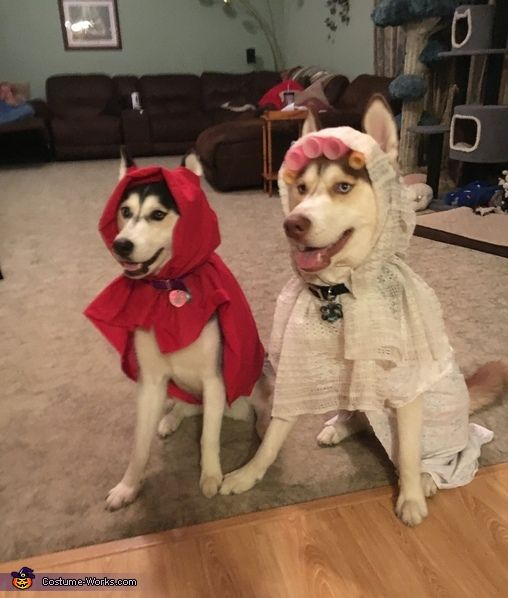 Little Red Riding Hood and the Bad Wolf Costume - 2016 Halloween Costume Contest via @costume_works