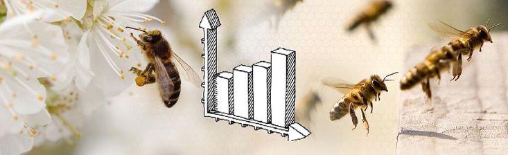 Τα στοιχεία που παρουσιάζονται απο τον οργανισμό FAO διαφέρουν αρκετά απο χώρα σε χώρα. Παρατηρούμε μια αύξηση του συνολικού αριθμού των μελισσιών που διαχειρίζεται η Ευρώπη κατά την περίοδο 2009-2010.