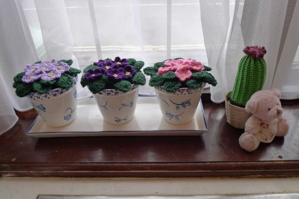 0265-morningwindowsill african violet free crochet pattern