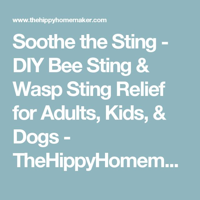 Soothe the Sting - DIY Bee Sting & Wasp Sting Relief for Adults, Kids, & Dogs - TheHippyHomemaker