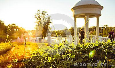 Sunset. city park in Khabarovsk