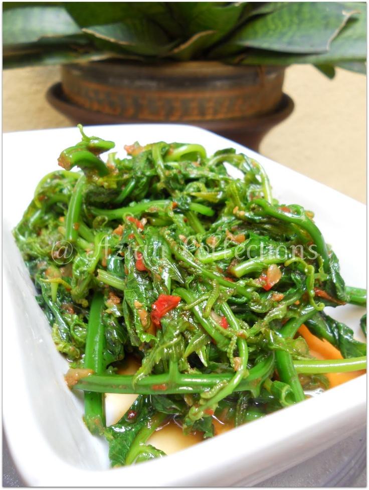 Pucuk paku (fiddlehead fern) goreng belacan. Similar to kangkung belacan but the fern gives the dish an extra depth and smoothness.