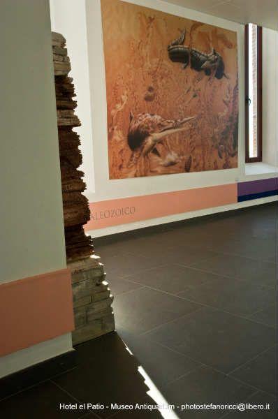 Hotel El Patio Museo Antiquarium (11)