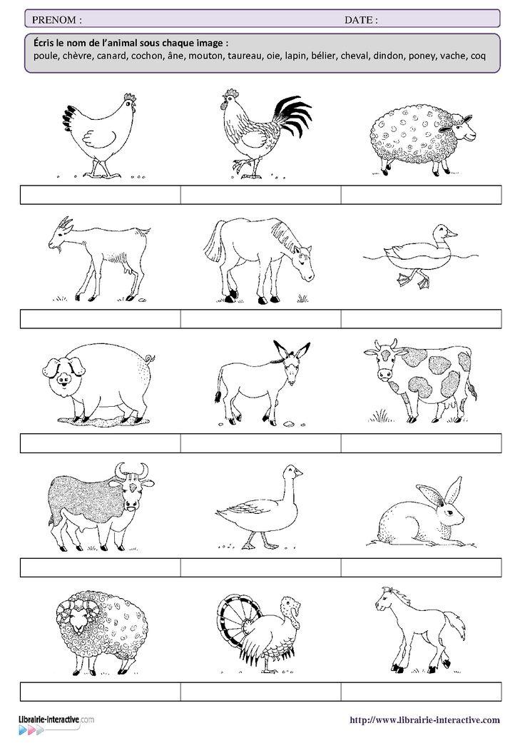 Une petite fiche de vocabulaire sur le thème des animaux de la ferme pour les élèves de CP et de CE1.