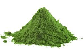 "SPIRULINA: L'ALGA DALLE ""INFINITE"" PROPRIETA'"