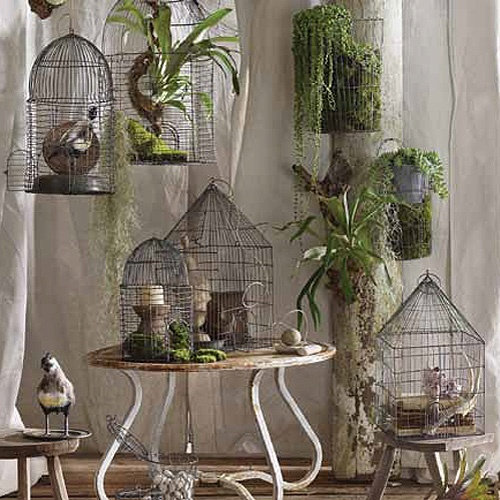 Bird Cage Planter: 252 Best Images About Birdcages For Plants On Pinterest