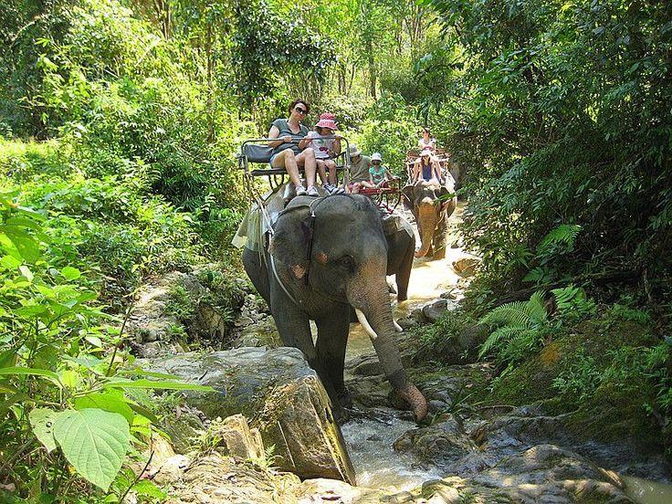 Phuket Jungle Safari Tours - Khao Sok & Khao Lak National Parks