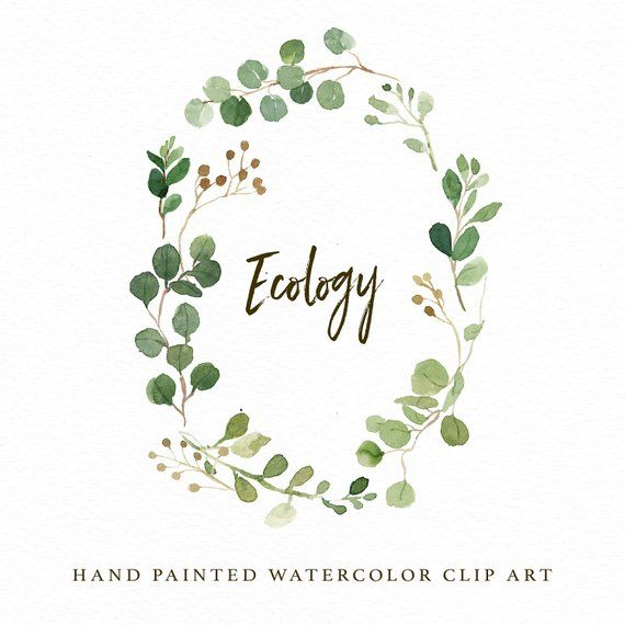 Watercolor Oval Leaf Wreath Clip Art Ecology Small Set Individual