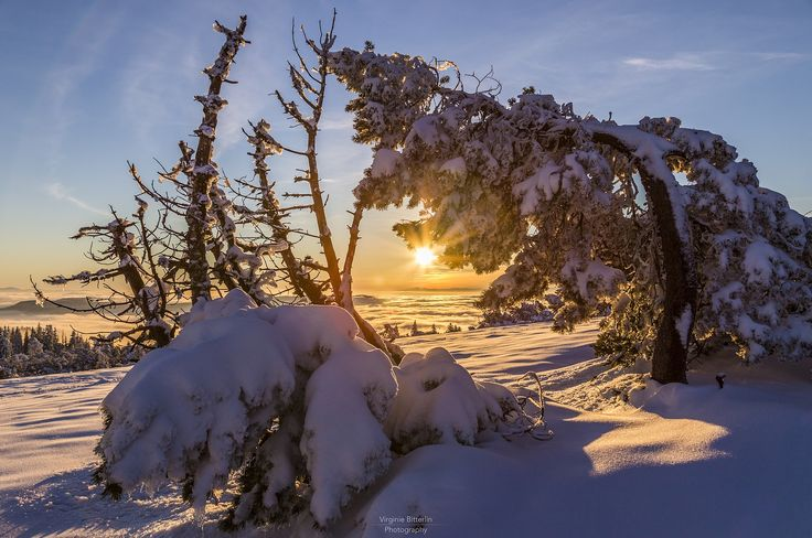 Photo Warming Up The Scenery by Virginie Bitterlin on 500px