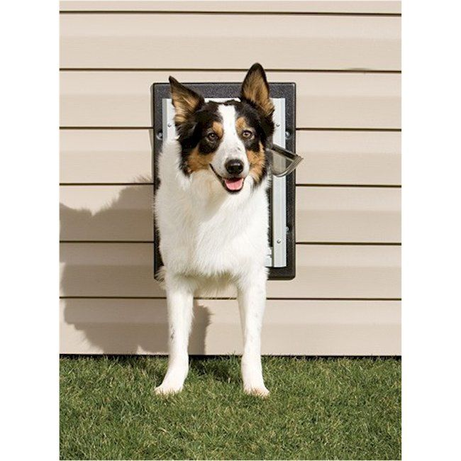 15 Best Dog And Cat Doors Images On Pinterest Pet Supplies Pet
