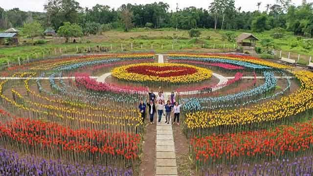 c25fa63fb6b60903ad679b71c91fb723 - Tulip Top Gardens 2019 Tulip Top Gardens 5 October