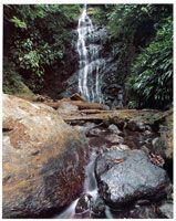Prácticamente es imposible hacer un recuento detallado de las microcuencas y quebradas que descienden de la serranía del Baudó-Los Saltos, aunque se estima que el recurso hídrico de esta zona es uno de los más altos del mundo.