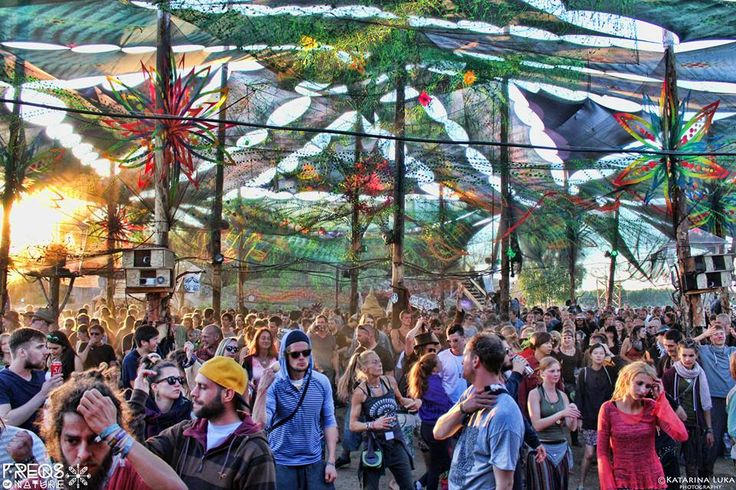 Freqs of Nature 2017    WHERE: Niedergörsdorf, Germany  WHEN: 5 July – 11 July 2017