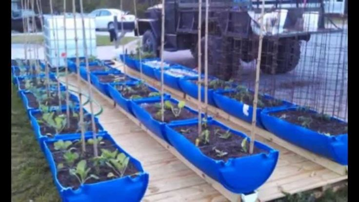 13 Best Images About Larry Hall S Hybrid Rain Gutter Grow