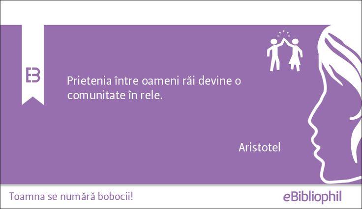 """""""Prietenia între oameni răi devine o comunitate în rele."""" Aristotel"""