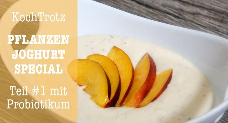 Sojafreie und milchfreie Joghurt-Alternative ohne Joghurt-Zubereiter - einfache Methode mit Probiotikum - roh-vegan