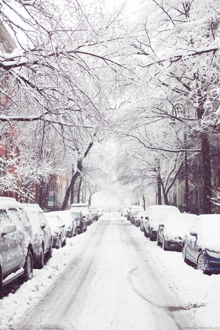 winter in new york / by carin olsson