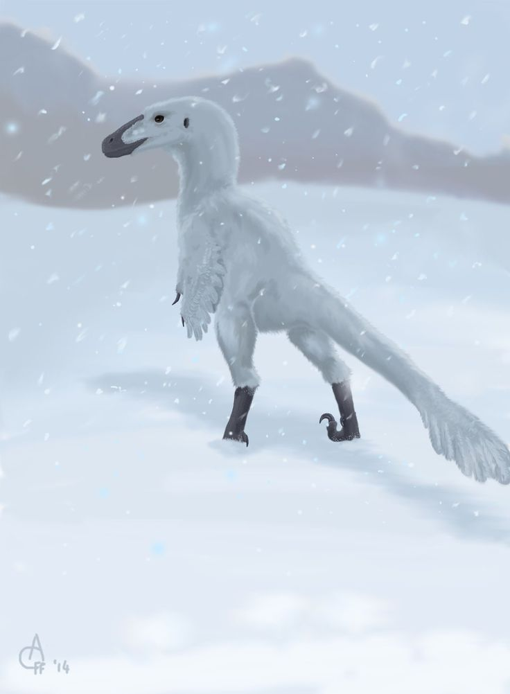 arctic dinosaur Dinosaur: the arctic expedition the first arctic dinosaurs were discovered in alaska, 250 miles inside the arctic circle the news sent shockwaves through the.