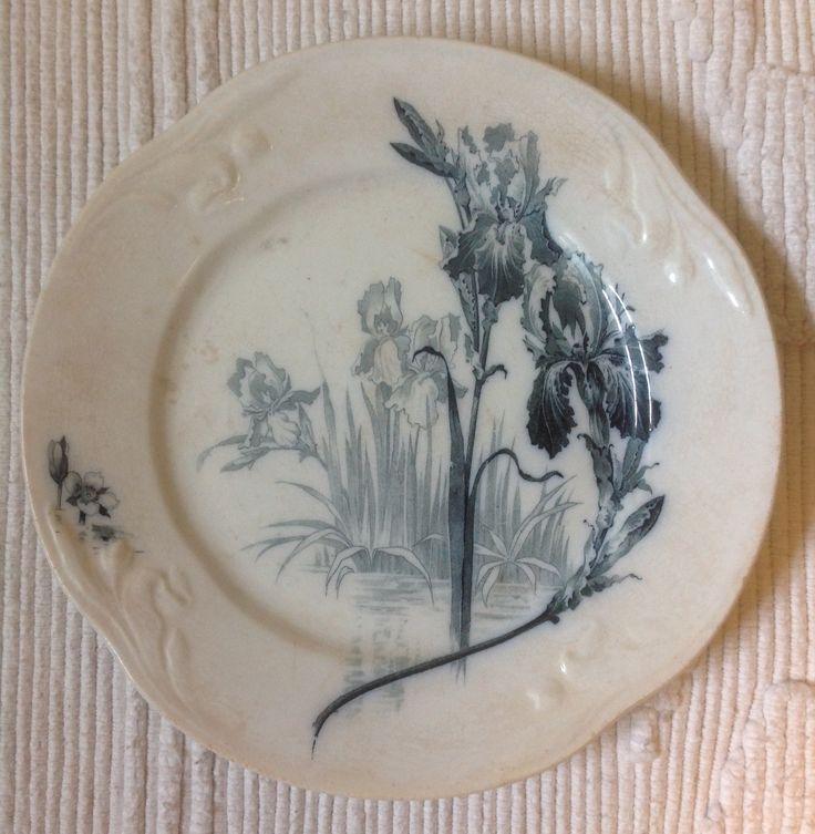 IRIS - dinner plate 24 cm - Villeroy \u0026 Boch & 79 best Villeroy \u0026 Boch images on Pinterest | Viola Soup bowls and ...