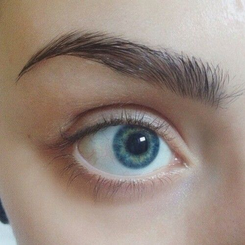 Beautiful natural eyebrows