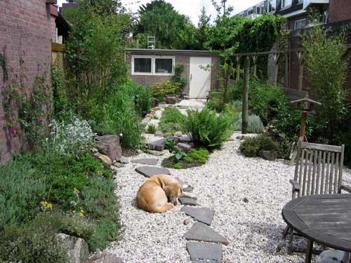 een gedeelte van de tuin opnieuw inrichten, een energetische tuin. Met relaxplekken, meditatieplekken. Dit is niet het juiste plaatje, maar het voelt wel heel erg rustig, dus vandaar.