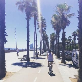 Barcelona City Tour: See Barcelona City By Bike | Fat Tire Tours
