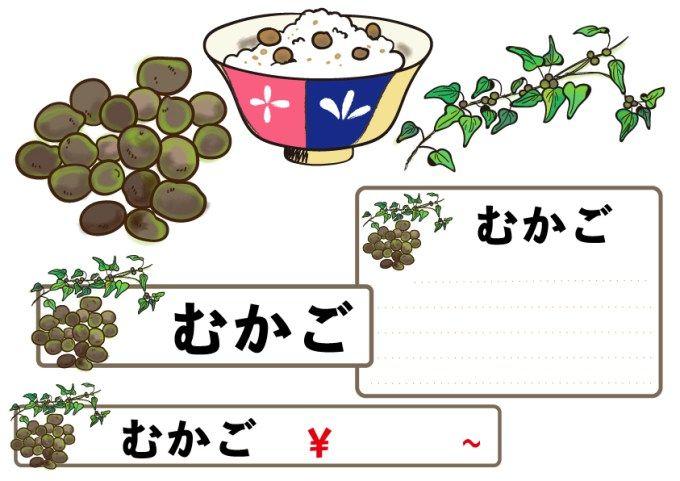 むかごは山芋の子 アイキャッチ画像