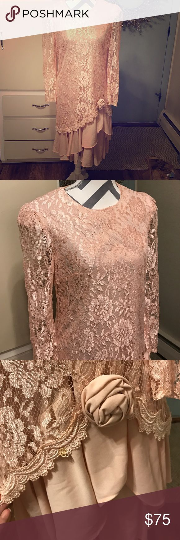Vintage David Rose dress Beautiful lace mauve pink dress. No size tag. But it's a bit loose on me and I wear a small. Would fit a size 6 -8  or medium. The dress has some stretch in it too. Small stain in dress pictured above! This dress is sure to make a statement gorgeous! david rose Dresses