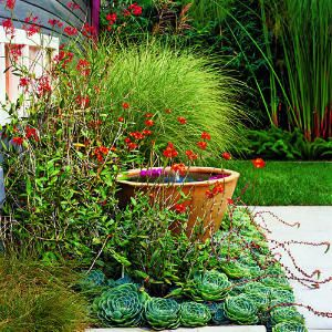 Perfectly simple  To give this small fountain more presence, the designer created a mini garden around it using billowy grasses, fleshy succulents, and showy orchids.