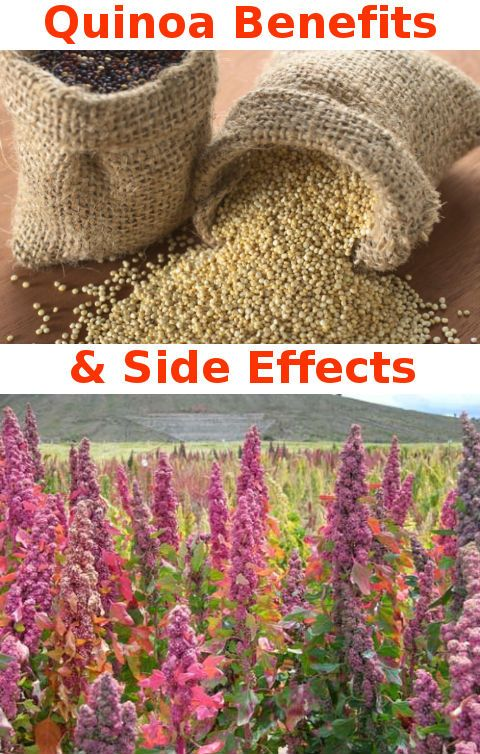 Quinoa helps fight diabetes, repairs tissue, aids in weight loss, alleviates migraine and hypertension, aids in weight loss, degestion, ensures a healthy heart, prevents certain kinds of cancer...