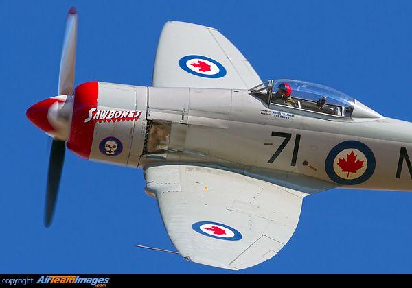 """michell169: """" Hawker Sea Fury T20 """" always reblog sea fury"""