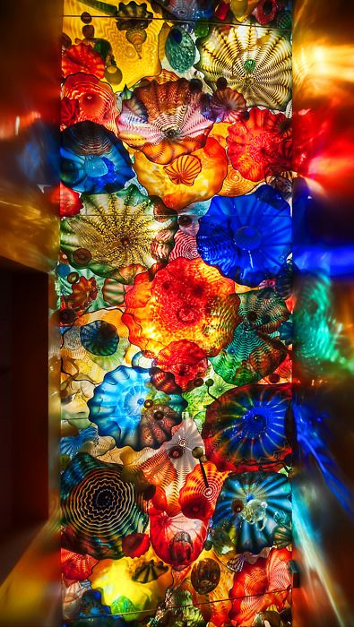 Dale Chihuly Glass Art - Persian Seaform Ceiling - Oklahoma City Museum