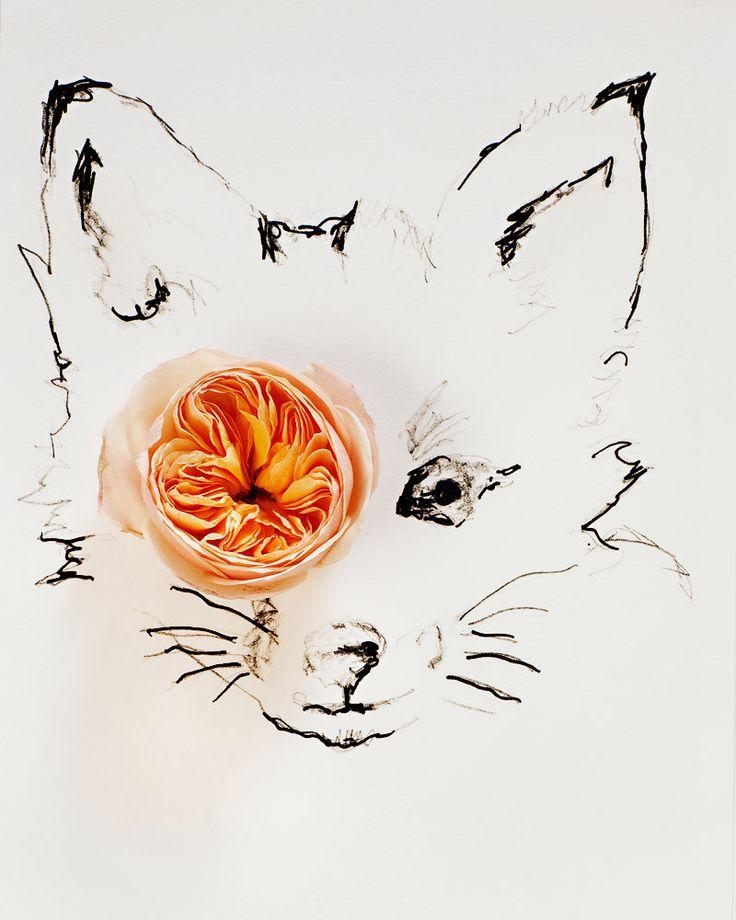 foxy flower illustration