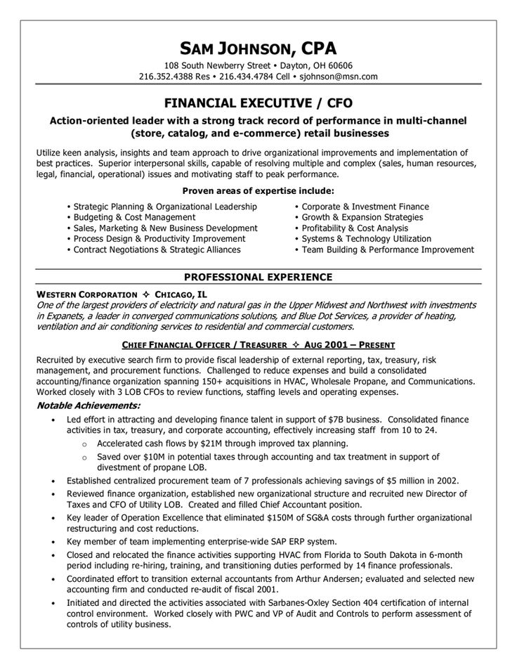 financial executive / CFO resume example Resume examples