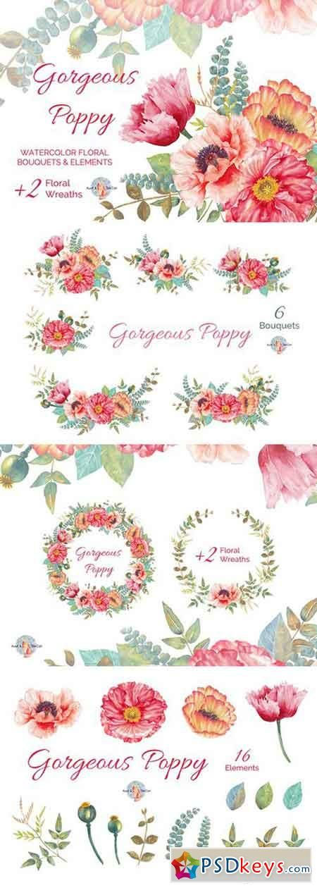 Gorgeous Poppy Watercolor Clipart 448448