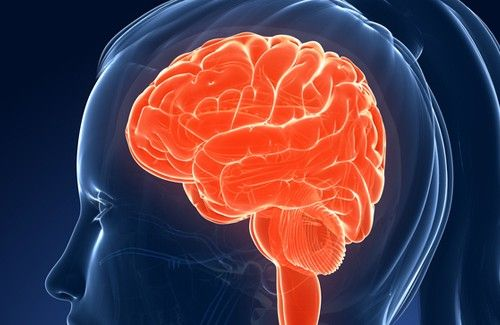 Alimenti che influiscono sulla memoria