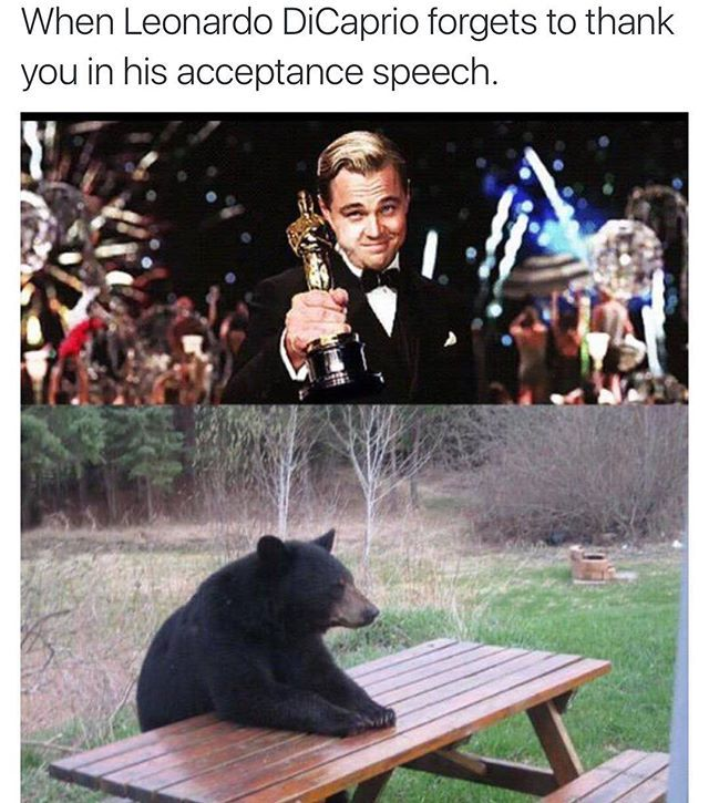 Pin for Later: 26 Times the Internet Lost Its Damn Mind Over Leonardo DiCaprio's Oscar Win