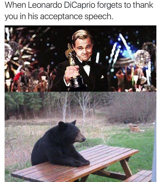 Pin for Later: Quand Internet Réagit à l'Oscar de Leonardo DiCaprio