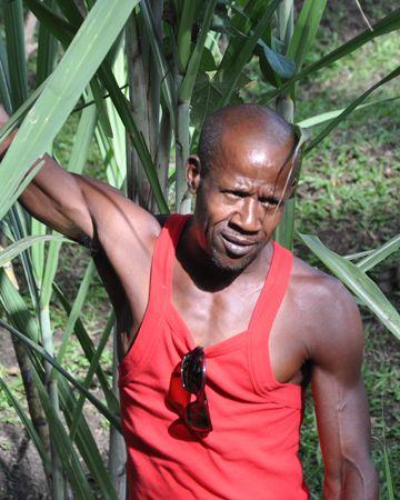 Une première journée bien remplie en Martinique