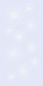 HABITAT | VECCHIA Fiore Blu | 25x50 | Wall Tiles