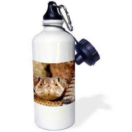 3dRose Western Diamondback Rattlesnake, Southwestern US - NA02 DNO0883 - David Northcott, Sports Water Bottle, 21oz