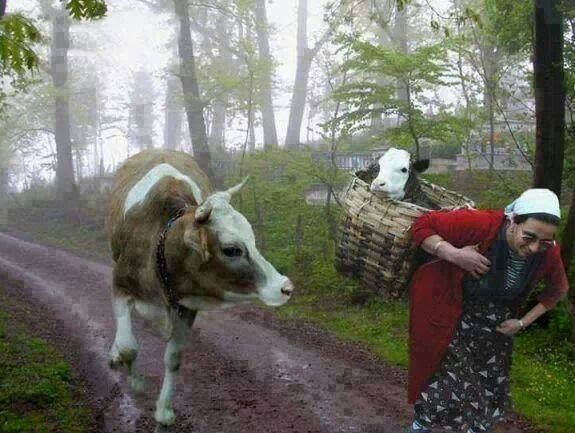 Artvin mountain roads... Respectable womens from Anatolia, my beatiful land Turkey