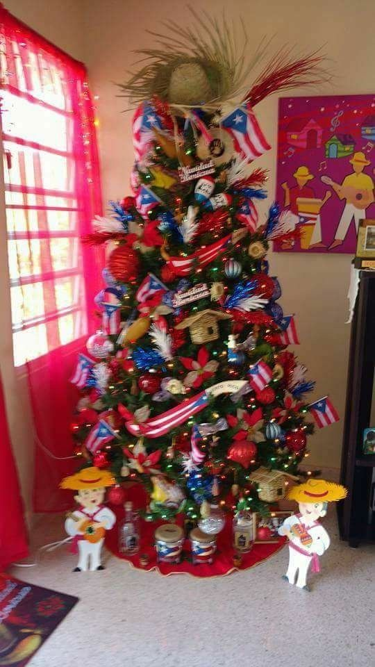 Christmas In Puerto Rico.Pin By Lanetteburgess On Foolery In 2019 Puerto Rican Flag
