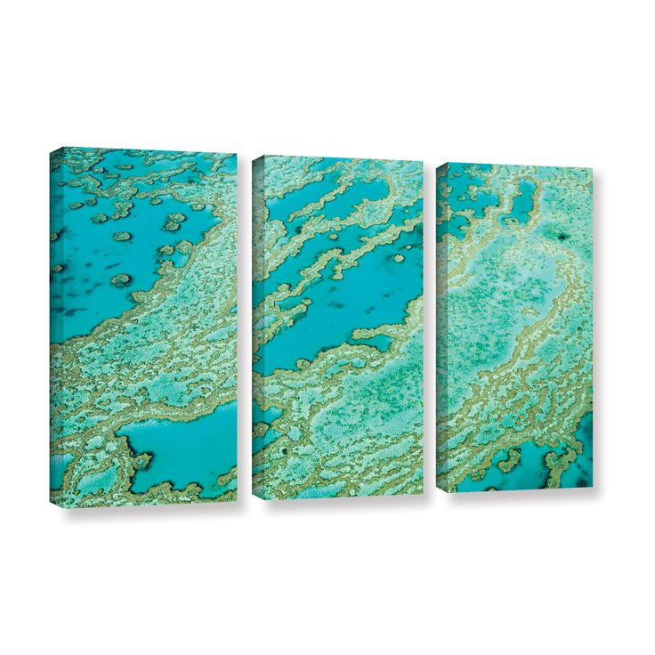 ArtWall Ken Skehan's 'Natural Abstract Great Barrier Reef number 2' 3-Piece…