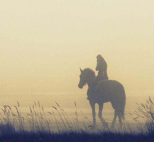 Misty morning ride